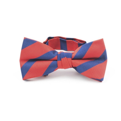 Fore!! Axel & Hudson Navy & Red Havard Stripe Bow Tie