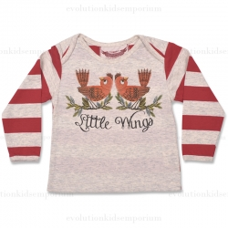 Little Wings Robins Long Sleeve Envelope Neck Tee